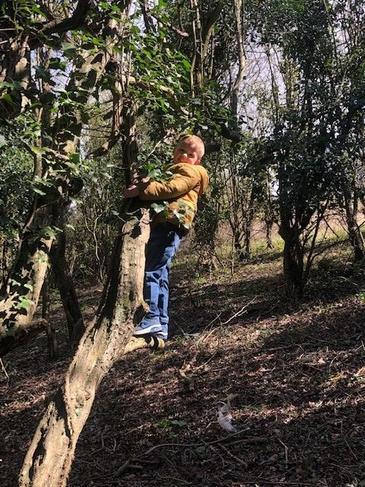 Climbing high!