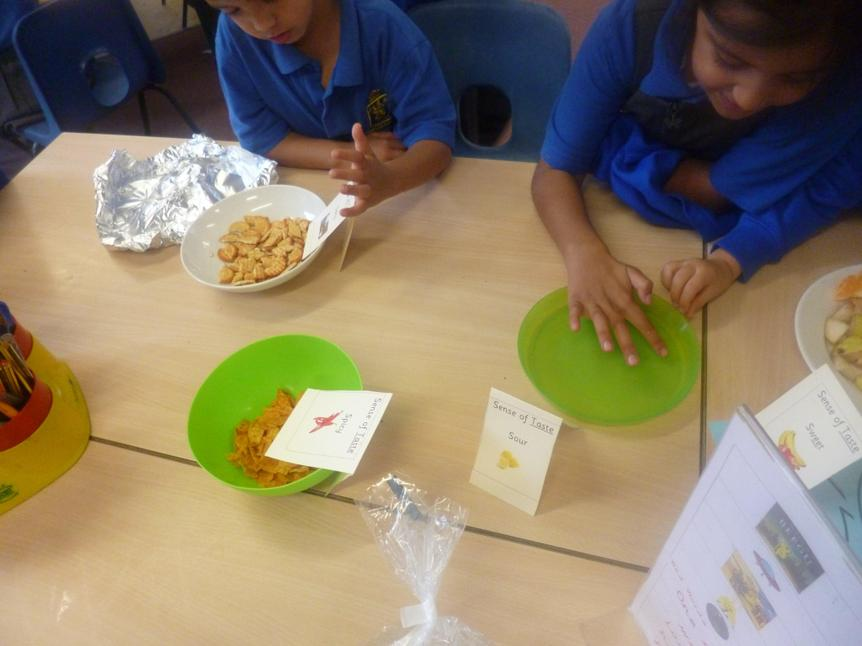 Exploring what different foods taste like