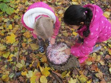 Making firework pictures using natural material