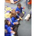 Owl class performing to Snowy the Owl