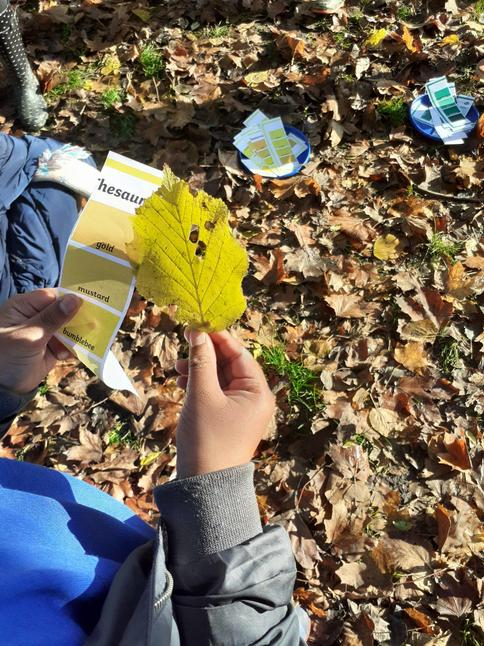 Finding colours in nature