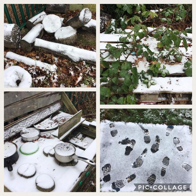 Snow changed our environment we had so much fun