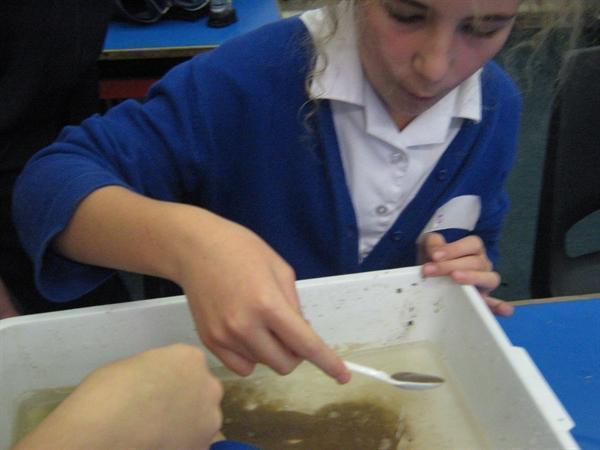Investigating superabsorbing polymers