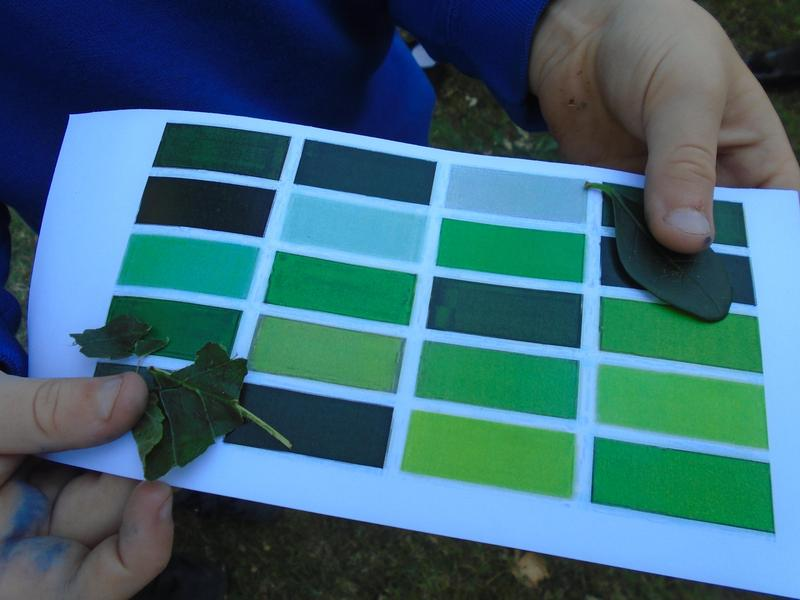 Nature colour matching