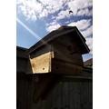 A home made bird box