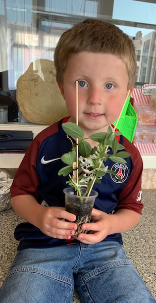 William is looking after his bean plant very well!