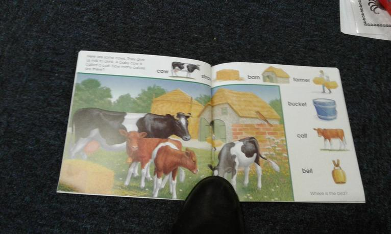 Get to know farm vocabulary