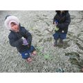 We made colourful snow