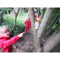 We know which animals live in the woodland!