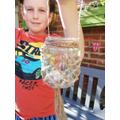 Mackenzie's recycled jars
