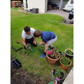 Ryan's been busy planting with his Dad