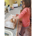 Baking with Bea