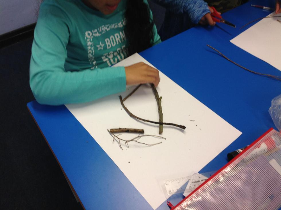 """Isabella agrees with Haley, """"It can't be a triangle because it has curved sides!"""""""