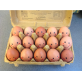 Humpty Dumptys for our 'Eggsperiment'