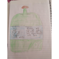 Denisa's potion for George!