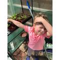 Ryker's vegetable garden