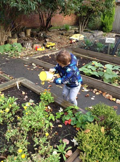 Exploring the vegetable garden