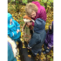 Following instructions from Woodland Fern