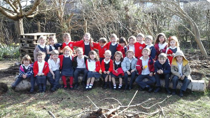 Pine Class!