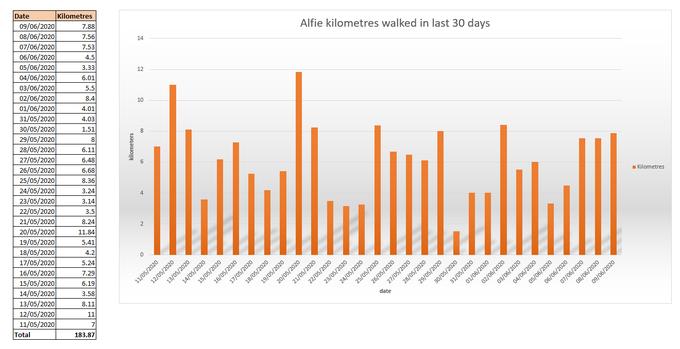 Alfie has walked more than 4 marathons in 30 days!
