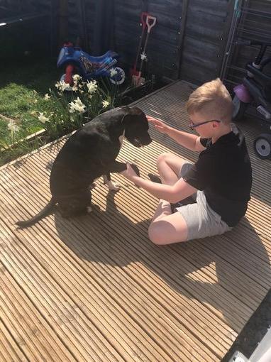 Josh and his dog!