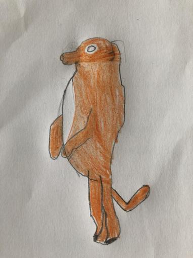 Fletcher's Meerkat