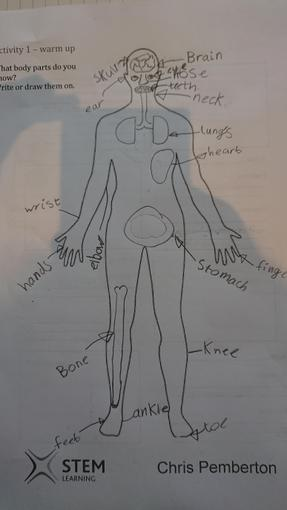 Oliver's body parts work