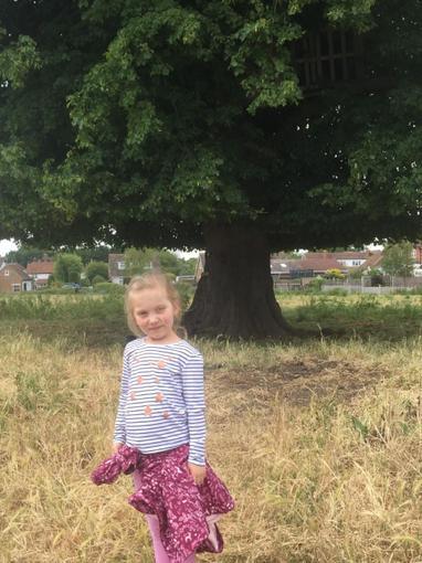Did Bonnie find the Magic Faraway Tree?