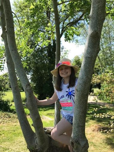 Elena's tree hunt