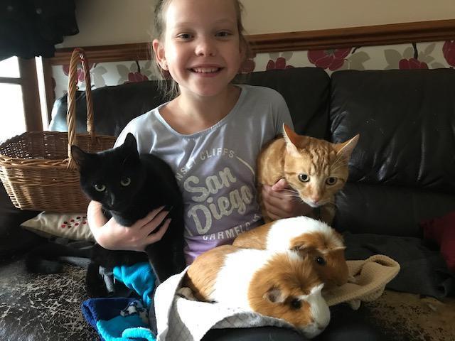Fearne's pets!