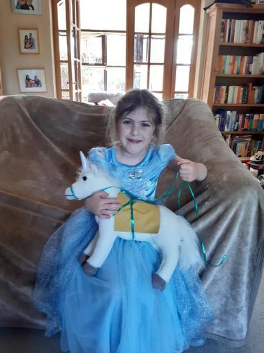 Isabel's horse and saddle - Year 1