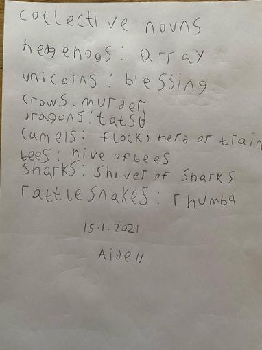 He has also explored some collective nouns today!