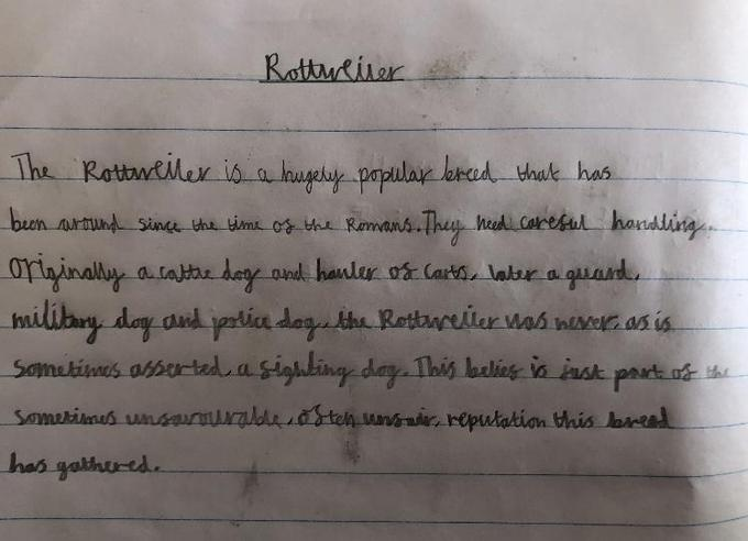Fletcher's writing about Rottweilers