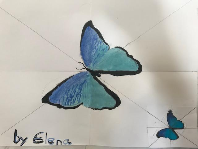 Elena's enlarged butterfly drawing