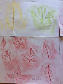 Devon's leaf rubbing