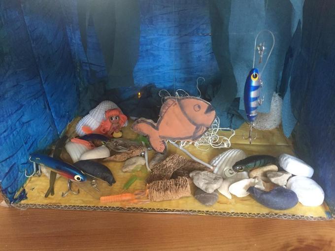 Bonnie's ocean habitat