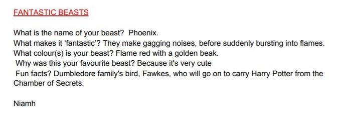 Niamh's Phoenix fact file!