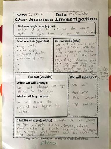 Elena's Science investigation sheet
