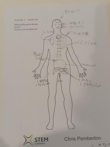 Logan's Science - body parts