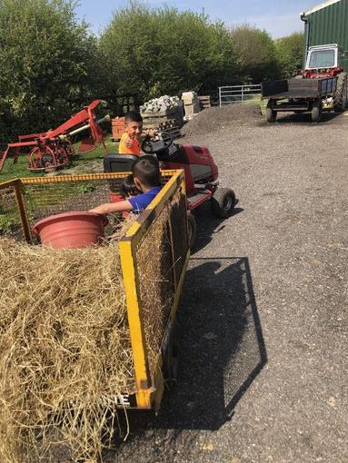 Fletcher on the farm