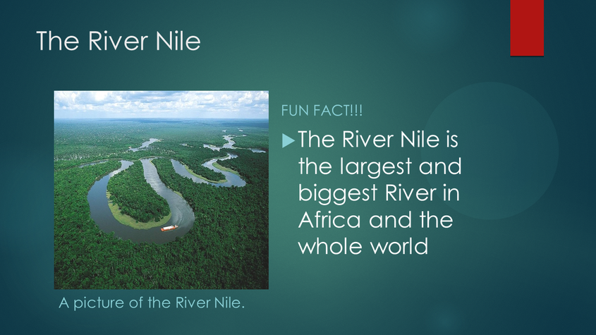Ellie S The River Nile Fact File (2)