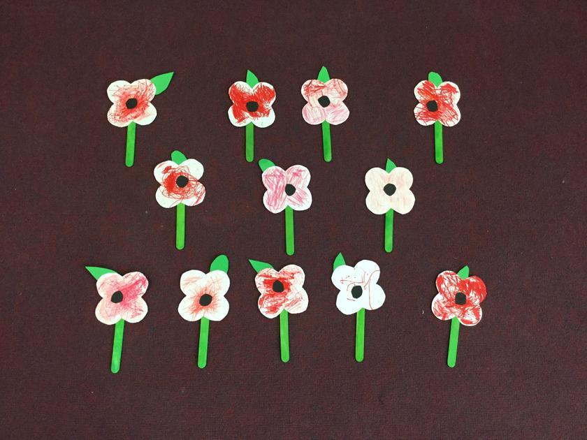 Nursery made poppies.