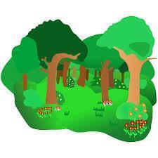 Forest School (Year 1 - Year 4)