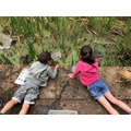 First Pond dipping by children of key workers