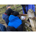 Scott team visited the Glencoyne farm