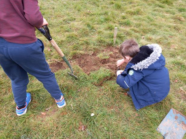 We dug, and removed turf,