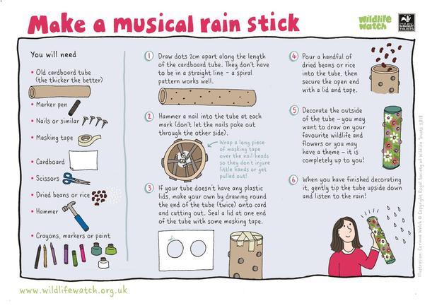 Make a rain stick