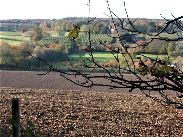 Our Westerly views of Kent
