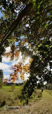 October Sunshine!