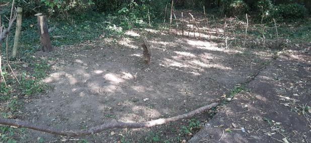 A new digging area